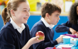 Evaluation article: Attainment and progress: The Rochford Review